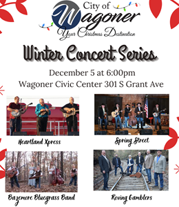 Winter Concert Series Continues